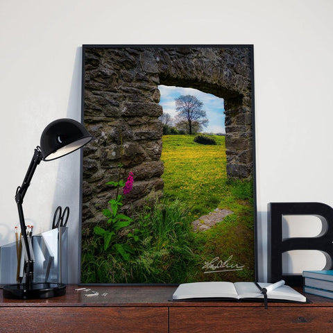Canvas Wraps - Foxglove and Dandelion Meadow, County Clare, Ireland Canvas Wrap Moods of Ireland