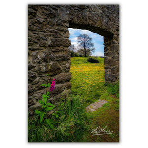 Canvas Wrap - Foxglove and Dandelion Meadow, County Clare - James A. Truett - Moods of Ireland - Irish Art
