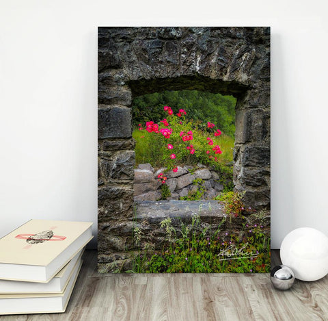 Image of Canvas Wraps - Wild Irish Roses in County Galway, Ireland Canvas Wrap Moods of Ireland