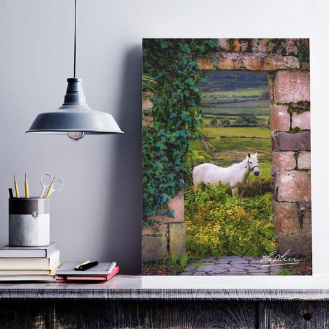 Image of Canvas Wraps - Horse in the Irish Countryside of County Clare Canvas Wrap Moods of Ireland
