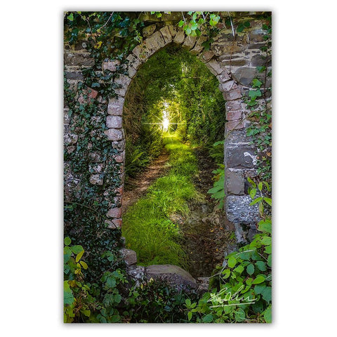 Posters - Tranquil Irish Path in County Clare, Ireland Poster Moods of Ireland