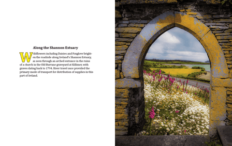 Coffee Table Book: Mystical Moods of Ireland, Vol. VI-Portals Through Time: Irish Doorways & Windows