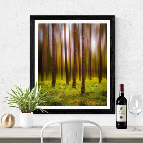 Image of Print - Ethereal Mood in Portumna Forest Park, County Galway Poster Print Moods of Ireland 16x20 inch