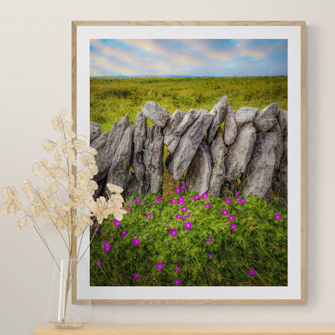 Image of Print - Bloody Cranes-bill Wildflowers in the Burren Poster Print Moods of Ireland