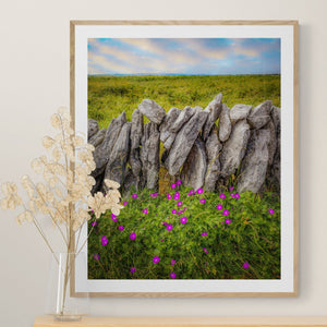 Print - Bloody Cranes-bill Wildflowers in the Burren Poster Print Moods of Ireland