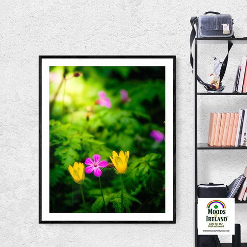 Print - Wildflowers at Thoor Ballylee, County Galway, Ireland Poster Print Moods of Ireland