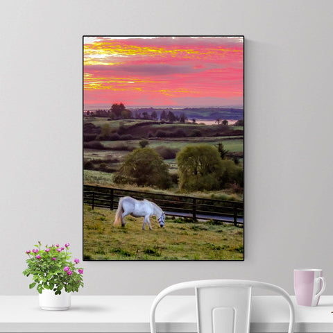 Image of Print - White Horse under Irish Sunrise, County Clare - James A. Truett - Moods of Ireland - Irish Art