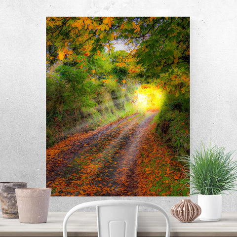 Print - Path to Cullinan Cottage, County Clare Poster Print Moods of Ireland