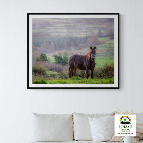 Image of Print - Horse in the Irish Mist, County Clare - James A. Truett - Moods of Ireland - Irish Art