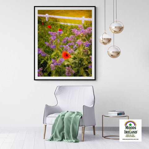 Print - Wildflower Meadow at Ballynacally, County Clare Poster Print Moods of Ireland