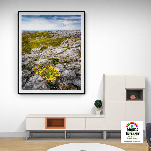 Image of Print - Gorse in the Rugged Burren Limestone - James A. Truett - Moods of Ireland - Irish Art