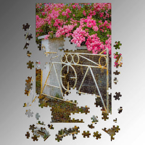 Puzzle - Gate with Irish Roses in County Clare Puzzle Moods of Ireland