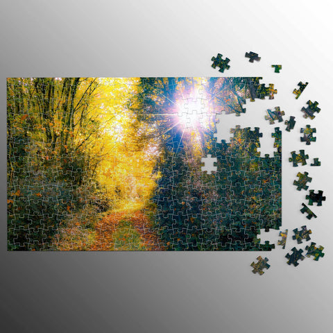 Puzzle - Woodland Path through Paradise, County Clare, Ireland Puzzle Moods of Ireland