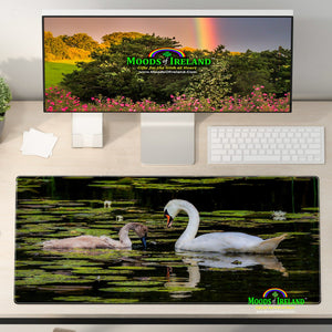 Desk Mat - Swan and Cygnet on Dromoland Lough, County Clare - James A. Truett - Moods of Ireland - Irish Art