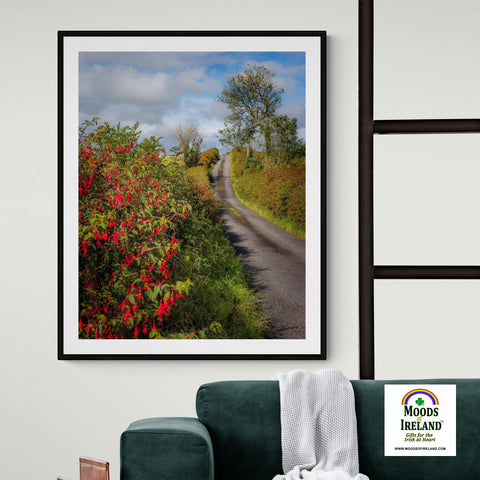 Image of Print - Fuchsias Blooming in the Irish Countryside - James A. Truett - Moods of Ireland - Irish Art