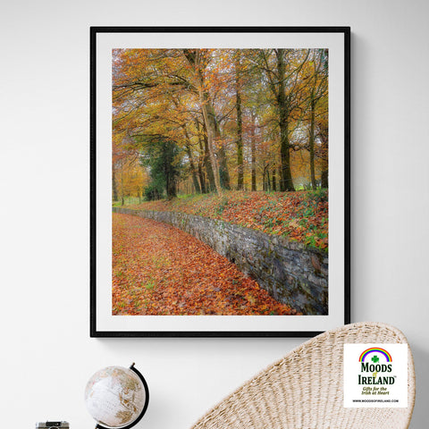 Image of Print - Autumn Colours in Killimer, County Clare Poster Print Moods of Ireland