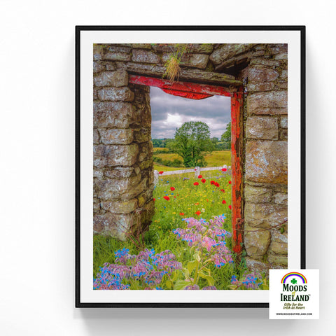 Image of Print - Summer Wildflower Meadow, Ballynacally, County Clare - James A. Truett - Moods of Ireland - Irish Art