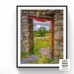 Print - Summer Wildflower Meadow, Ballynacally, County Clare - James A. Truett - Moods of Ireland - Irish Art