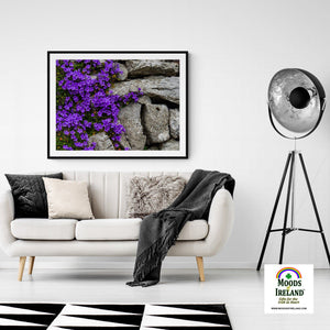 Print - Purple Flowers on Stone Wall - James A. Truett - Moods of Ireland - Irish Art