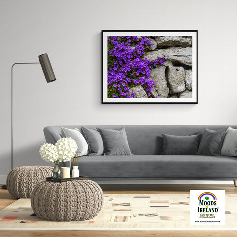 Image of Print - Purple Flowers on Stone Wall - James A. Truett - Moods of Ireland - Irish Art
