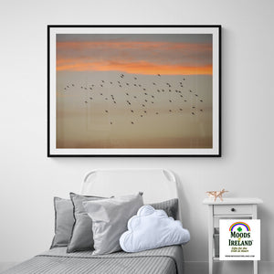 Print - Starlings at Sunset over County Clare - James A. Truett - Moods of Ireland - Irish Art