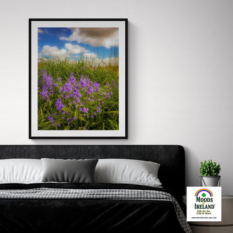 Image of Wildflower Print - Ballycorick Bluebells - James A. Truett - Moods of Ireland - Irish Art