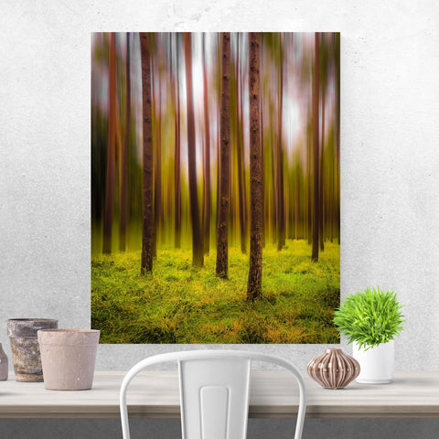 Image of Print - Ethereal Mood in Portumna Forest Park, County Galway Poster Print Moods of Ireland 8x10 inch