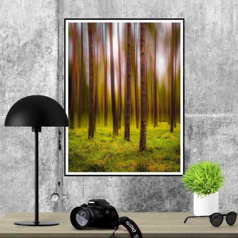 Image of Print - Ethereal Mood in Portumna Forest Park, County Galway Poster Print Moods of Ireland 24x36 inch
