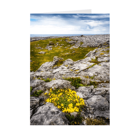 Image of Folded Note Cards - Gorse in the Rugged Burren Limestone - James A. Truett - Moods of Ireland - Irish Art
