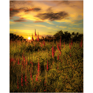 Print - Fairy Fingers at Sunrise, County Clare Poster Print Moods of Ireland 8x10 inch