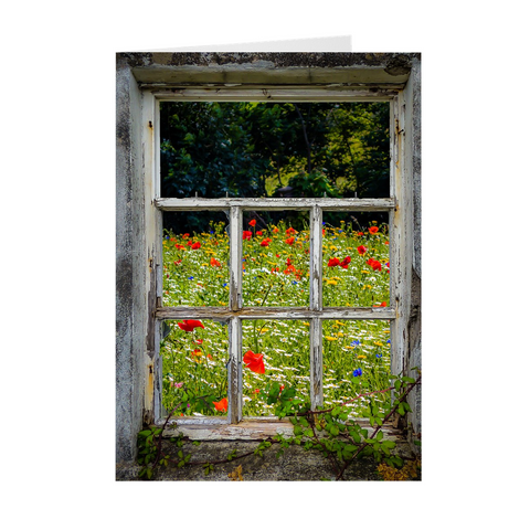 Folded Note Cards - Irish Wildflower Meadow framed by Weathered Window - James A. Truett - Moods of Ireland - Irish Art