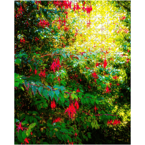 Image of Puzzle - Wild Fuchsias Frollicking in the County Clare Countryside - James A. Truett - Moods of Ireland - Irish Art