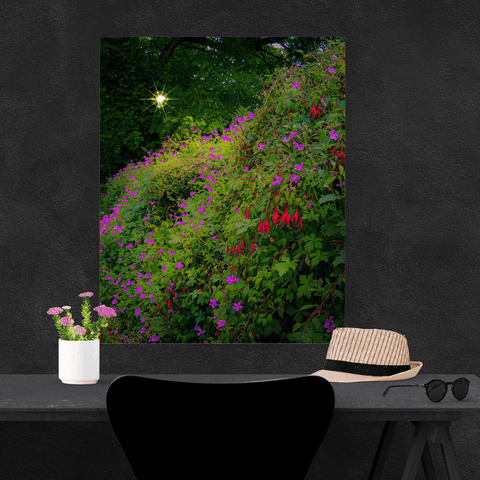 Image of Canvas Wraps - Roadside Irish Wildflower Cascade in Afternoon Sun Canvas Wrap Moods of Ireland