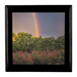 Jewelry Box - Irish Rainbow and Wildflowers in County Clare Jewelry Box teelaunch Ebony Black