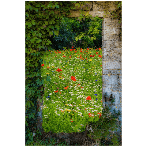 Print - Magical Wildflower Meadow in County Clare Poster Print Moods of Ireland 20x30 inch