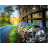 Print - Bluebell-lined County Clare Road - James A. Truett - Moods of Ireland - Irish Art
