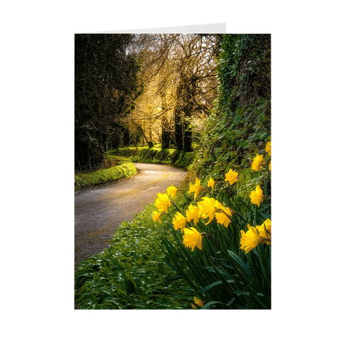 Folded Note Cards - Irish Spring Country Road, County Clare - James A. Truett - Moods of Ireland - Irish Art