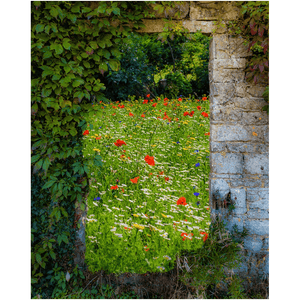 Print - Magical Wildflower Meadow in County Clare Poster Print Moods of Ireland 8x10 inch