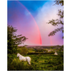 Print - Monochrome Irish Rainbow at Sunset, County Clare, Ireland - James A. Truett - Moods of Ireland - Irish Art