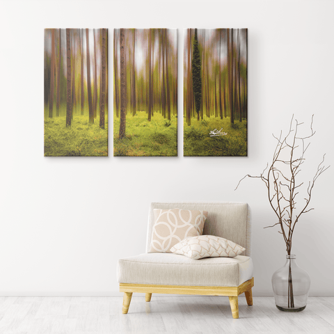 Image of Triptych Canvas - Ethereal Mood in Portumna Forest Park, County Galway Canvas Wall Art Set 3 teelaunch
