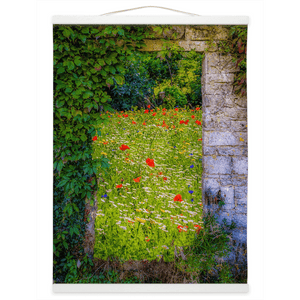 Irish Wall Hanging - Magical Irish Wildflower Meadow in County Clare Wall Hanging Moods of Ireland 12x16 inch White