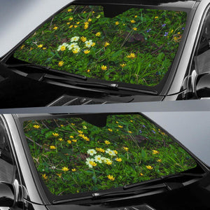 Auto Sun Shade - Spring Primroses and Lesser Celandine Flowers in County Galway