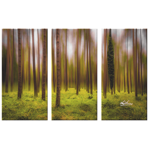Image of Triptych Canvas - Ethereal Mood in Portumna Forest Park, County Galway - James A. Truett - Moods of Ireland - Irish Art