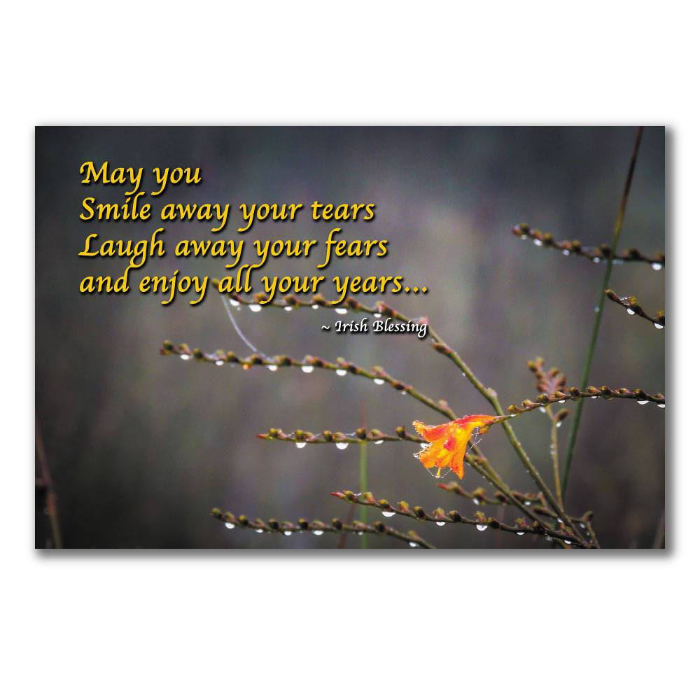 May you smile away your tears Irish Blessing Poster Poster Moods of Ireland