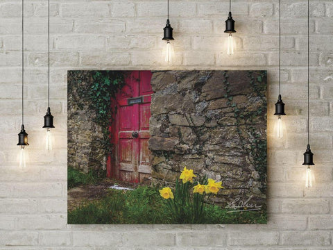 Image of Daffodils Outside Irish Cottage, Ireland Wall Art Poster Moods of Ireland