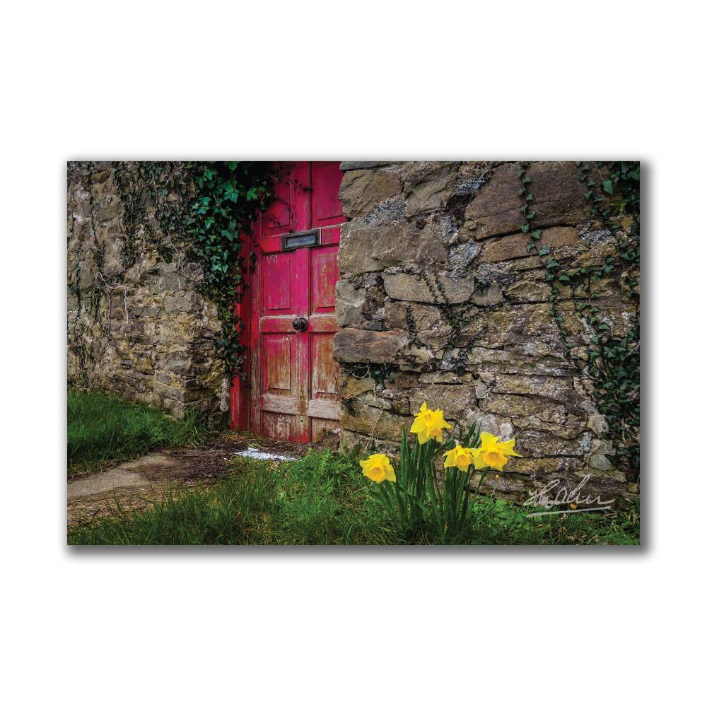 Daffodils Outside Irish Cottage, Ireland Wall Art Poster Moods of Ireland