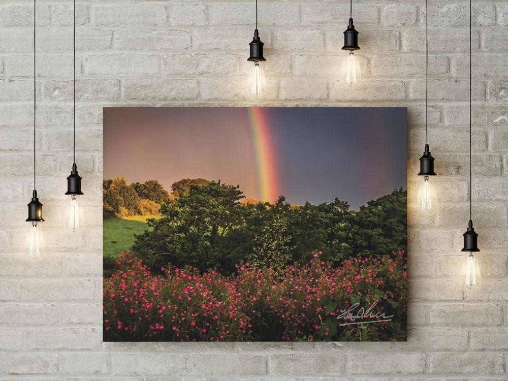 County Clare Rainbow and Wildflowers, Irish Poster Poster Moods of Ireland