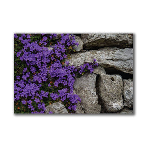 Purple Flowers on Stone Wall Irish Poster Print Poster Moods of Ireland
