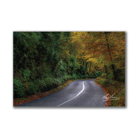 Image of Serpentine Road in Autumn Irish Poster Print Poster Moods of Ireland