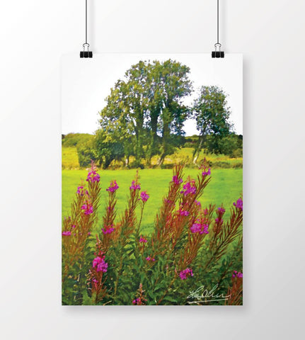 Image of Lanna Fireweeds Irish Poster Print
